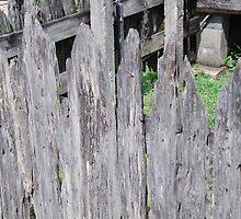 Cajun Fence by Christopher Heil