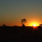 An outback sunset by geojas