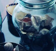 shells and coins still life by califpoppy1621