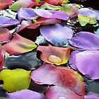 Pretty Petals  by clizzio