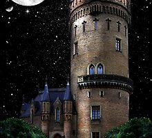 Castle Behind The Moon by Yvonne Less