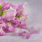 ~ sweet peas ~ by Lorraine Creagh