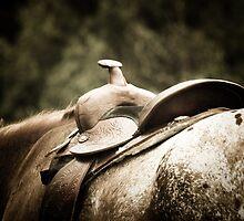 Saddle Up by Ula Zammit