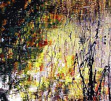 """After the Flood"" by Merice  Ewart-Marshall - LFA"