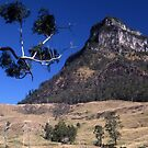 Mount Lindesay, Queensland, Australia by muz2142