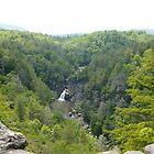 Linville Falls by tneldreth