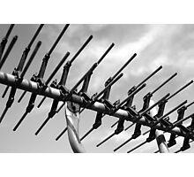 tv antenna Photographic Print