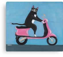Cat on a Vespa Canvas Print