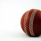 Nostalgic Toys Series - Cricket by KirstyStewart