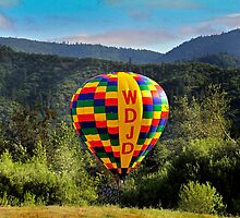 beautiful balloon by Jeannie Peters