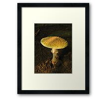 Journey Within and Recycle Framed Print