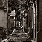 Death  'alley by martinilogic