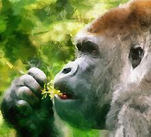 gorilla brush by DARREL NEAVES
