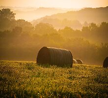 Summer hayfield in Wisconsin by KathyBerger