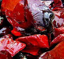 Red Igneous Glass by Dana Roper
