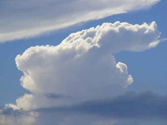 The Art Of Cloud Shapes by MyClouds