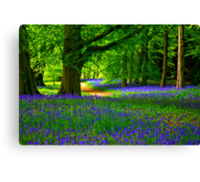 Bluebell Wood - Thorpe Perrow #3 Canvas Print