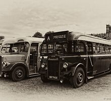 AEC v Leyland by David J Knight