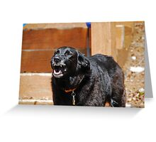 Hurry Up Mom! Greeting Card