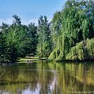 Woodland Park 2 by rocamiadesign