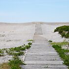 Path to Bliss by Meghann Clark
