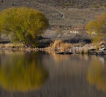 Central Otago Reflections by Les Pullen