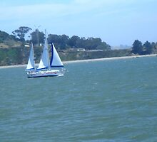 sailboat near Angel island,san francisco bay by califpoppy1621