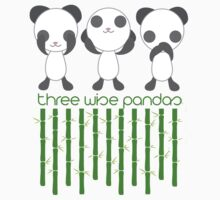 Three Wise Pandas by xandiee