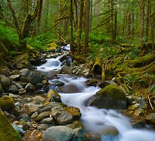 Cascade Stream by RavenFalls