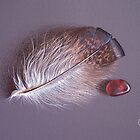 Feather and sea glass # 3 by Elena Kolotusha