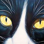 Feline face #2 by Elena Kolotusha