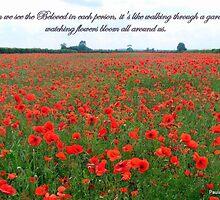Beloved Poppies by Paula Walker