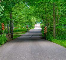 Pleasant Drive by ECH52