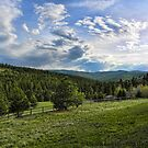 Mountain Meadow by rocamiadesign