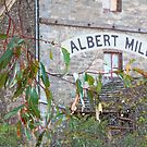 ~ Albert Mill ~ Nairne ~ by LeeoPhotography