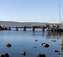 Cornelian Bay Boat Shed - Hobart by Anthony Davey