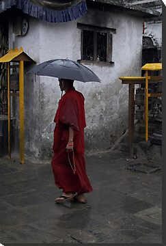 Monk at Namohbuddha, Nepal by John Callaway