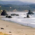 Beautiful Oregon Coast. by Carla Maloco