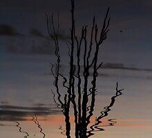 Reflect. by Petehamilton