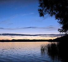 The Lake at Dusk by Melissa Holland