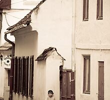 OnePhotoPerDay Series: 169 by L. by C. & L. | ABBILDUNG.ro Photography