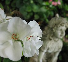 Of Geraniums and Angels by MarianBendeth