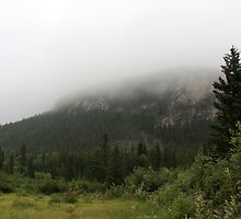 Misty Mountain by Alyce Taylor