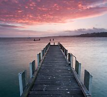 Mornington Morning by Alistair Wilson