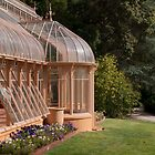 Beechwood Garden by SusanAdey