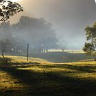 Kangaroo Valley mist by Michael  Keene