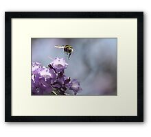 Flying with one engine 6554 Framed Print