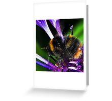 Bumble Bee Buzz Greeting Card