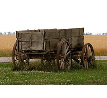 Buckboard in Wheat field Photographic Print