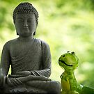 Buddha and Buddy by Edward Myers